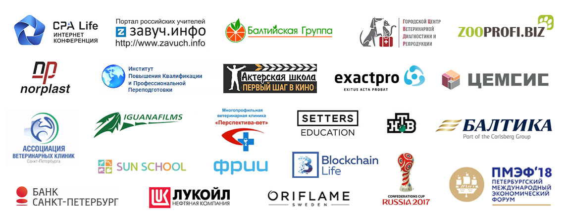 sanktvideo partners